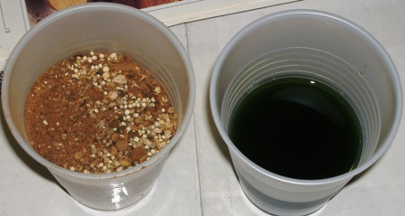 The cup on the left contains a TIME RELEASED NUTRIENT, while the cup on the right contains a LIQUID NUTRIENT.